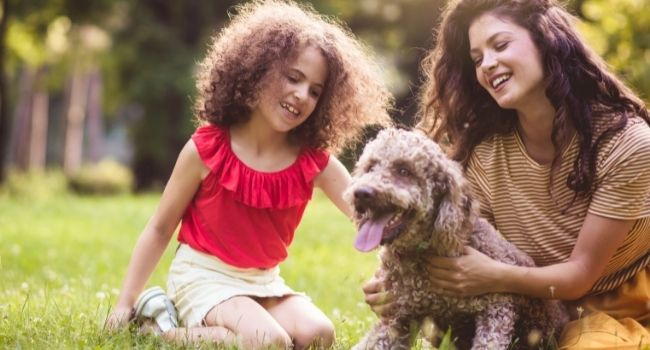 Convert your pet playtime into earning time and make your pets happy